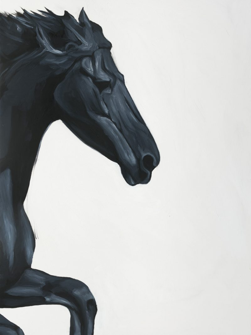 Sobia Shuaib - Black Stallion